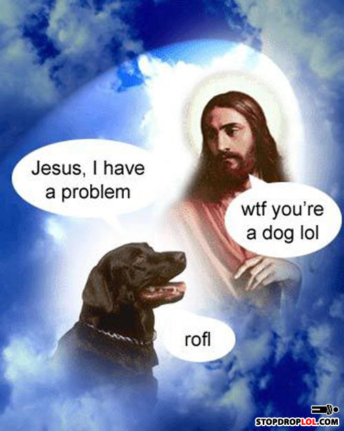 - all rocks go to heaven!