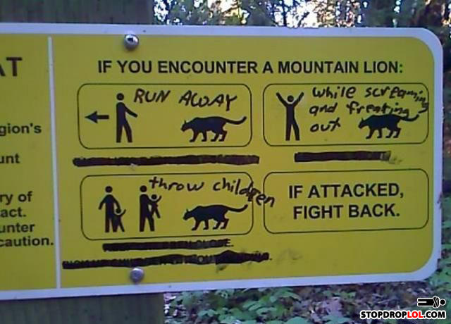 - ok... they wouldn't be called mountain lions if th
