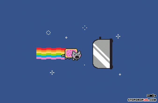 - N-i-g-g-a nyan cat in 3...2...1...