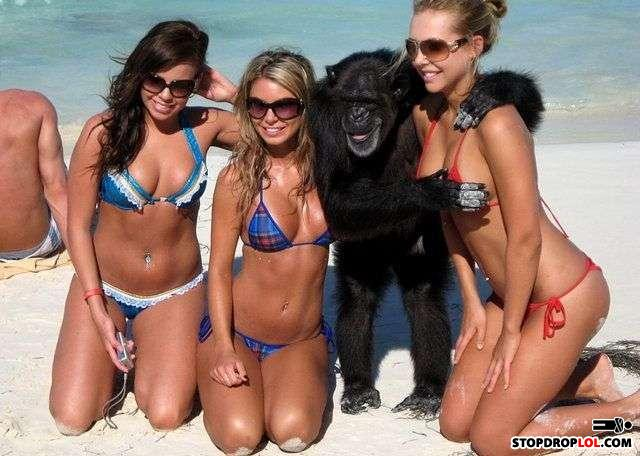 - They always said that the best have monkey scrodem